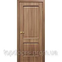 """Версаль"" Двери ПВХ ПГ ТМ Омис , фото 3"