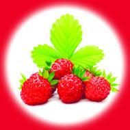 Земляника / Wild Strawberry 10 мл, 0 мг/мл, 50PG - PUFF Жидкость для электронных сигарет (Заправка)