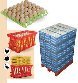 Пластиковая тара для яиц