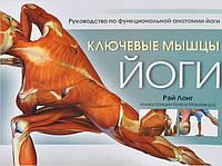 Ключевые мышцы йоги. Руководство по функциональной анатомии йоги. Лонг Р.