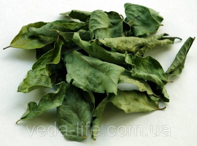 Карри лист, листья Карри, 15 грамм