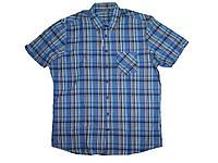 Рубашка мужская, LIVERGY, размер L (41/42),(43-44), арт. М-175/1