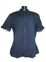 Рубашка мужская, LIVERGY, размер L (41/42), арт. М-174, фото 1