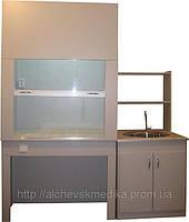 Мойка МЛ-1 с надставкой + Шкаф лабораторный ШВЛ-Э