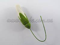 Бутон лилии