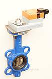 Задвижка поворотная Баттерфляй диск чугун VITECH с эл.приводом GM BELIMO Ду100 Ру16, фото 3