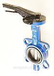 Затвор поворотный Баттерфляй VITECH Ду125 Ру16  диск нержавеющая сталь, фото 4