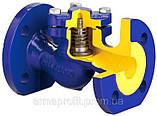 Клапан обратный подъемный чугунный фланцевый арт. 287 ZETKAMA Ду15 Ру16, фото 7