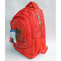 Рюкзак школьный ( спиннер в подарок) для девочки Sh651-688-1