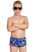 Плавки -шорты для мальчика, принт - доски для серфинга, Nirey, Италия