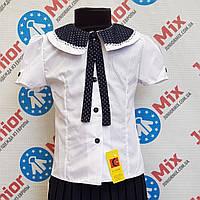 Школьная детская блузка для девочки с синим большим воротником на короткий рукав  ELMAK. ПОЛЬША
