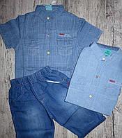 Костюм джинсовый рубашка и шорты  на мальчика 8- 14 лет, ТМ Grace В-50471, Венгрия