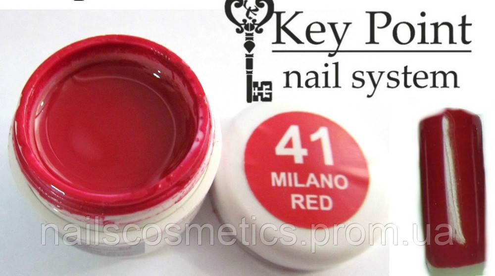 №41 Milano Redгель-краска