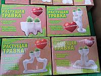 Керамические травянчики двойные-отличный подарок