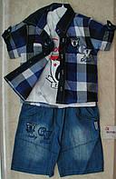 Костюм тройка футболка+шорты +рубашка коттон 1-3 года клетка синяя