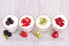 Закваска домашний Ацидофильный йогурт (Италия) на 3 литра молока