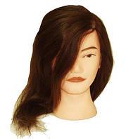 Голова муляж натуральный волос — шатенка