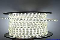 Светодиодная лента LED 2835-60 220V IP68 Холодно-белая (СТАНДАРТ)