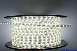 Светодиодная лента LED 5050-60 220V -1 IP67 Холодно-белая