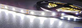 Светодиодная лента LED 3528-60 12V IP33 белая