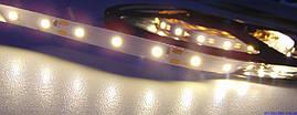 Светодиодная лента LED 3528-60 12V IP33 теплая
