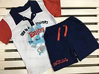 Стильный хлопковый комплект для мальчика ФЛАМИНГО на рост 110
