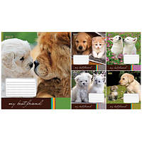 Тетрадь в линию 36 листов 760161 «Best Friend»