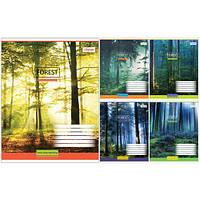 Тетрадь в клетку 48 листов 760388 «Magic Forest»