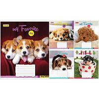 Тетрадь в клетку 18листов760320«Favorite Dog» 1 Вересня