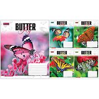 Тетрадь в клетку 48 листов760392«Butterflys» 1 Вересня
