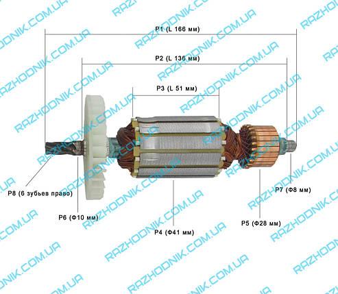 Якорь на дисковую пилу Интерскол ДП-165/1200, фото 2