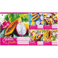 Тетрадь в клетку 48 листов794976«Exotic Fruits» Зошит Украины