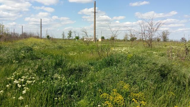Продам участок село Каролино-Бугаз, Одесская область, Овидиопольский район