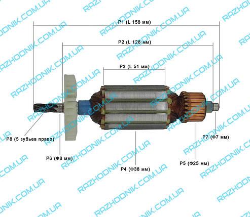 Якорь для электропилы STURM CC9916, ЭНЕРГОМАШ ПЦ-99160, фото 2
