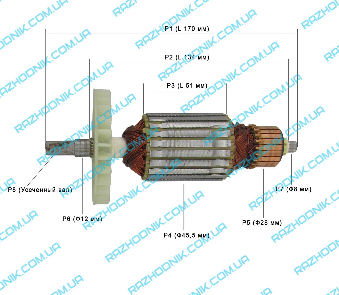 Якір для електропили Интерскол ПЦ-16