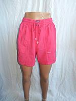 Женские шорты, жатка норма 001, / купить шорты женские оптом