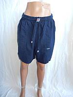 Женские шорты, жатка норма 004 / купить шорты женские оптом