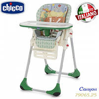 Стульчик для кормления Chicco Polly 2 в 1 Canyon 79065.25