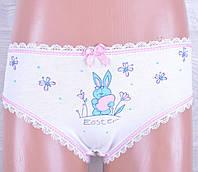 """Детские трусики """"Easter"""" для девочек. Разные цвета. Оптом."""