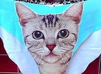 """Хитовые женские трусики слип с 3-D рисунком """"Кошечка"""", разные цвета и размеры. Розница, опт в Украине."""