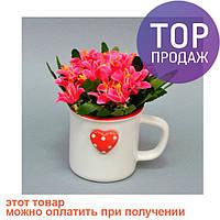 Цветы в вазонах (кружка) SU5401 / искусственные цветы