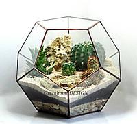 """Флорариум """"Додекаэдр"""" с кактусами, ширина -25 см, высота -28 см."""