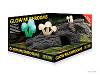 Декорация Exo Terra Glow Mushrooms для террариума, Грибы люминесцентные