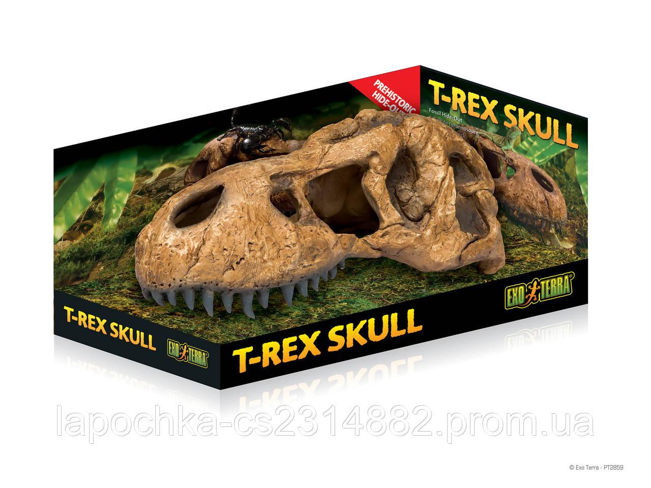 Декорация Exo Terra T-Rex Skull Fossil Hide Out для террариума, череп тираннозавра - Лапочка интернет-магазин зоотоваров в Харькове