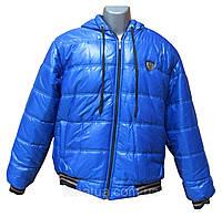 Куртка зимняя (демисезон) синяя