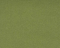 Меблева тканина вельвет PETRA PISTACHIO (виробник Bibtex)