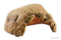 Норка для черепах Exo Terra Tortoise Cave