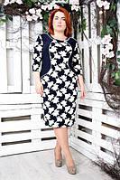 Женское платье большого размера АНИТА КЛЕН  ТМ ИРМАНА 52-62 размеры