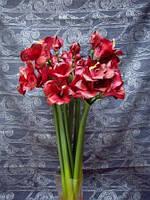 Цветы искусственные Гиппеаструм (цвет красный)