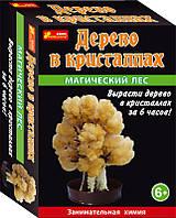 Выращивание кристаллов Дерево в кристаллах (персиковое)